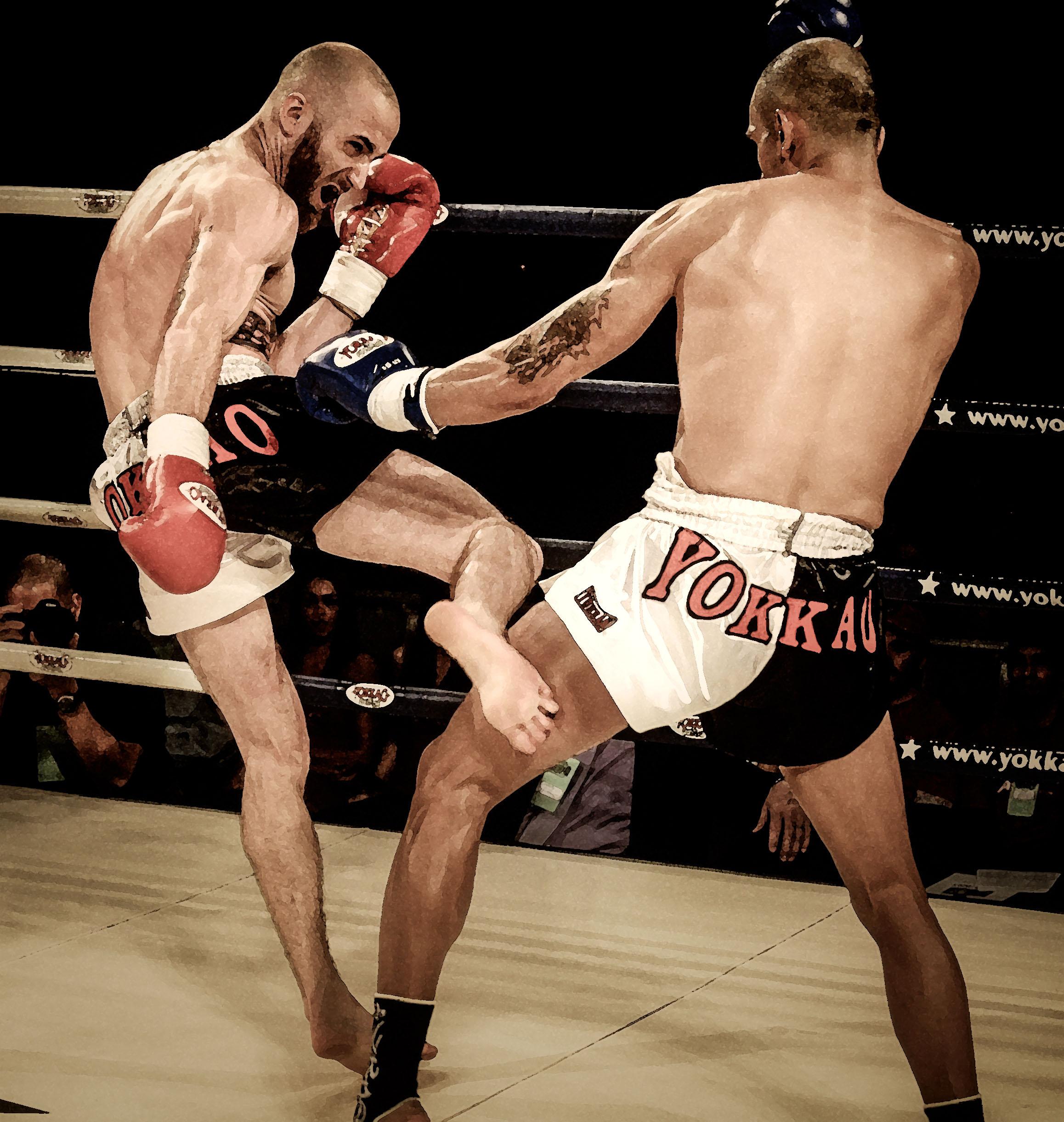 The Muay Thai Guy – Sean Fagan